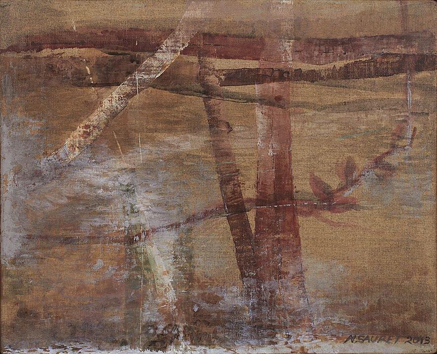 Cauce S (2013)